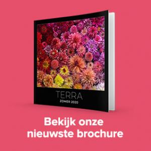 Terra zomerbrochure 2020